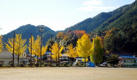 autumn_0801