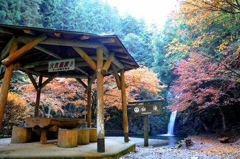 autumn_0812