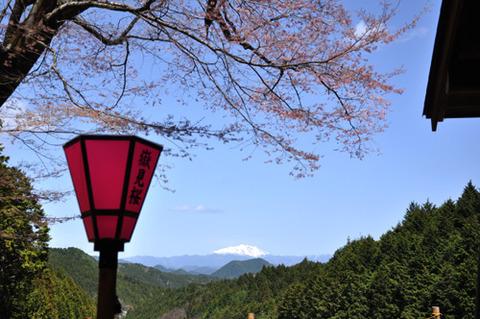kanayamasakura_takemi05
