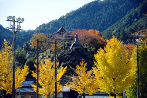 autumn_0802