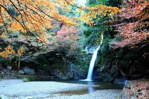 autumn_0813