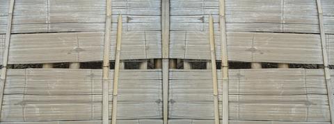 竹の橋01