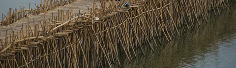 竹の橋02