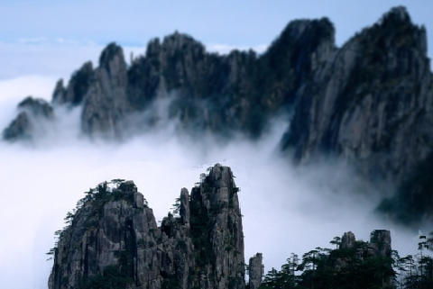 蜀の山50055