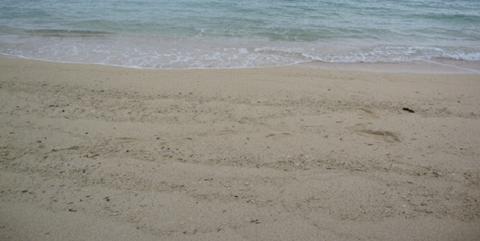砂浜001