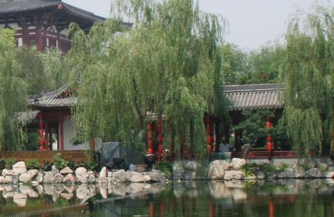 楊貴妃清華池002