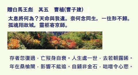 贈白馬王彪 其五 曹植(曹子建)