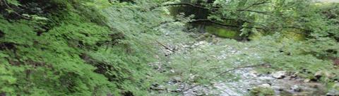 渓谷003
