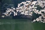鎌北湖写真