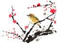 spring_06