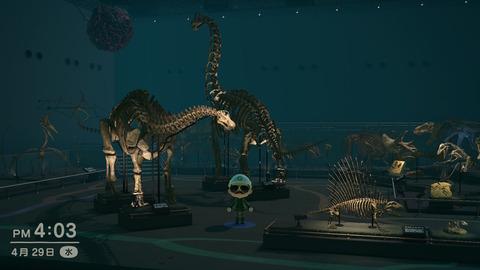 「あつまれどうぶつの森」の博物館、凄すぎる