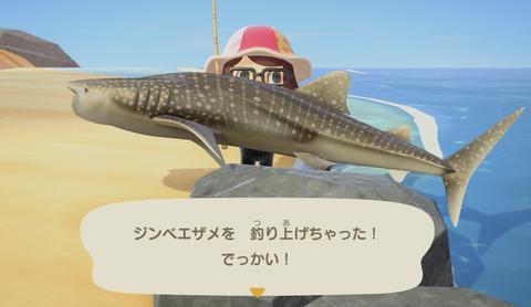 animal-crossing-new-horizon-shark