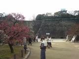 梅林園の風景2008