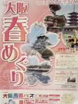 大阪春めぐり2008