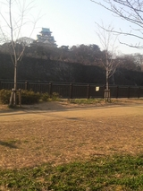 大阪城2009年1月