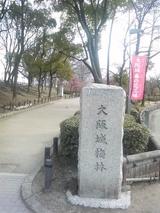大阪城梅林2008年2月6日