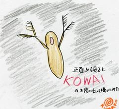 kumako(2枚目)