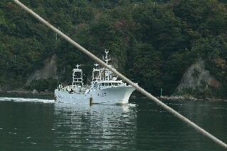 帰港するカニ漁船