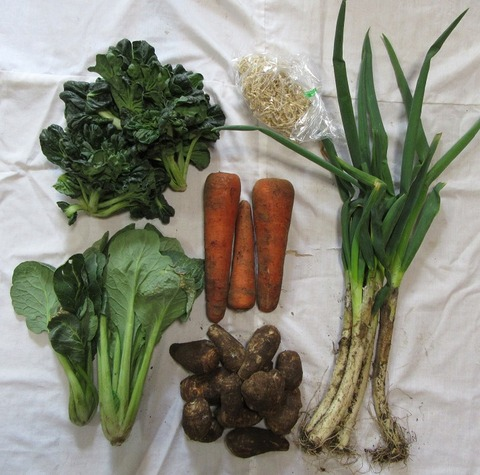 11産直野菜