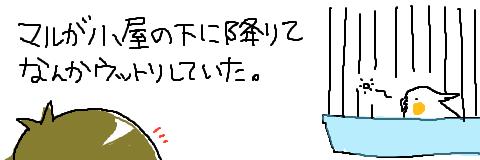 マルといっしょ-3
