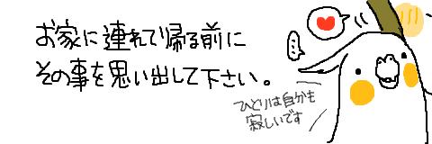 マルといっしょ-03