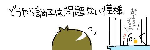 マルといっしょ-5