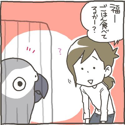 fuku60