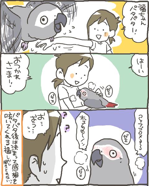 fuku36