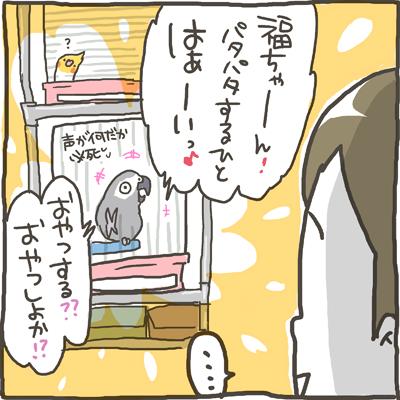 fuku59