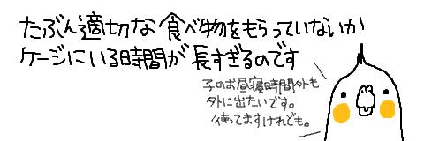マルといっしょ-14