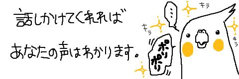 マルといっしょ-10