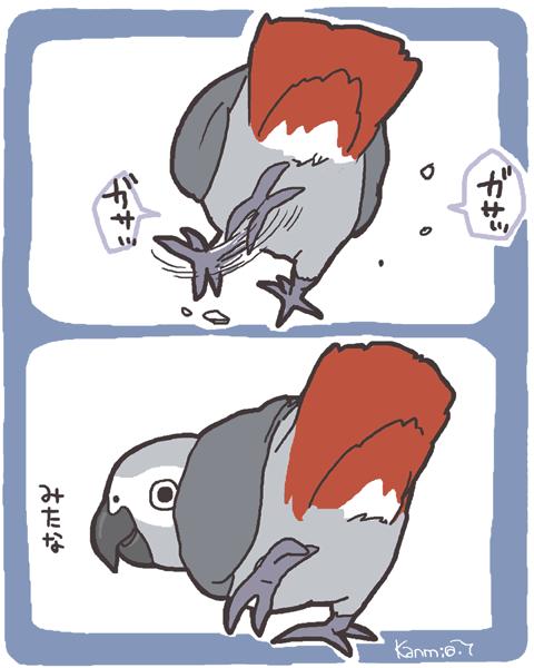 fuku001