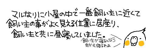 マルといっしょ-6