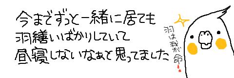 マルといっしょ-1