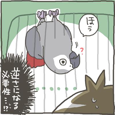 fuku63