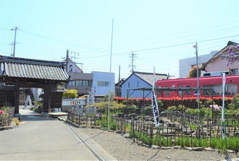 本覚寺12 (3)