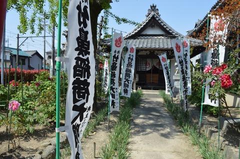本覚寺16