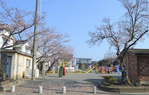 2大仏公園花 (2)