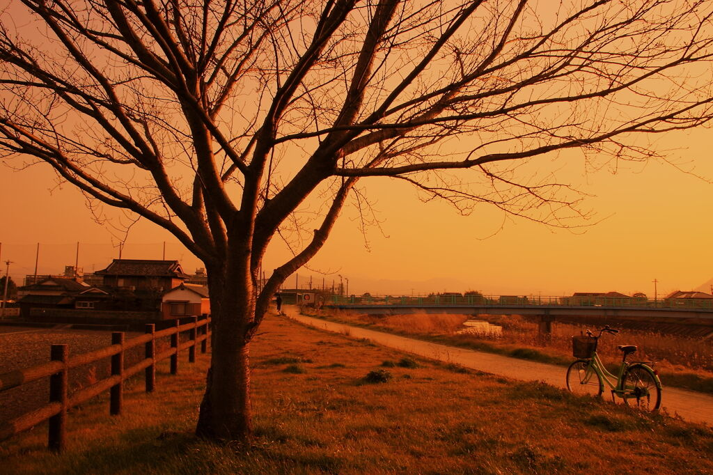 スズキの鈴木修氏「これからは田舎の時代」←ホンマなん?