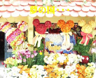 夢の国〜お花〜