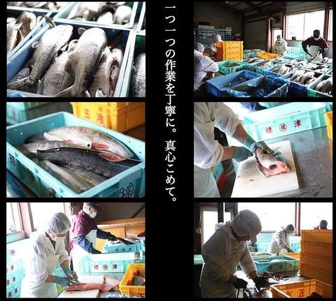 鮭とば新3