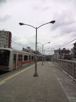 20110526.jpg