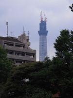20100530.jpg