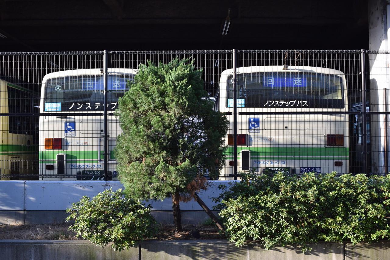 今後が気になる大阪シティバス20...