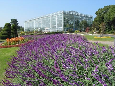 event_flowerpark