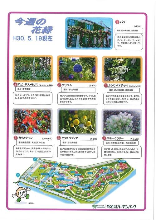 20180520_ガーデンパーク花の見ごろ