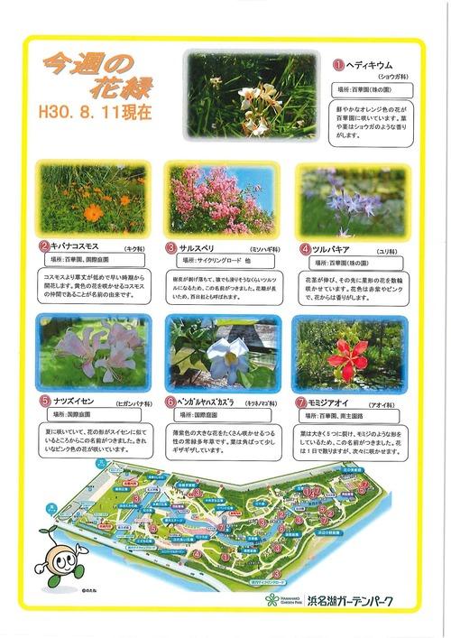 20180812_ガーデンパーク情報