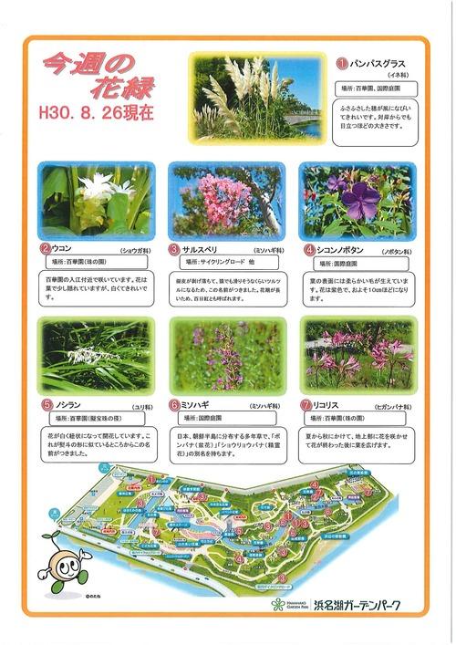 20180906_ガーデンパーク