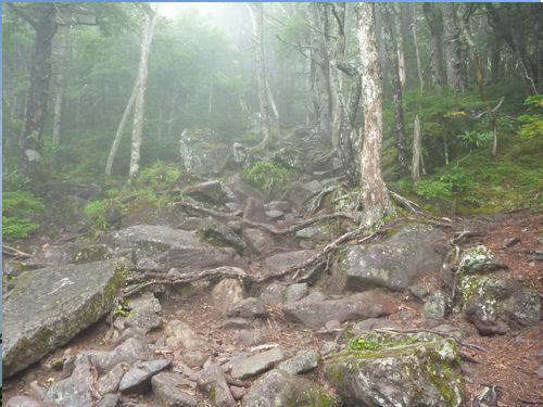 編つらいのぼり岩