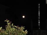 「満月」会えずとも脳裏焼き付く笑顔あり